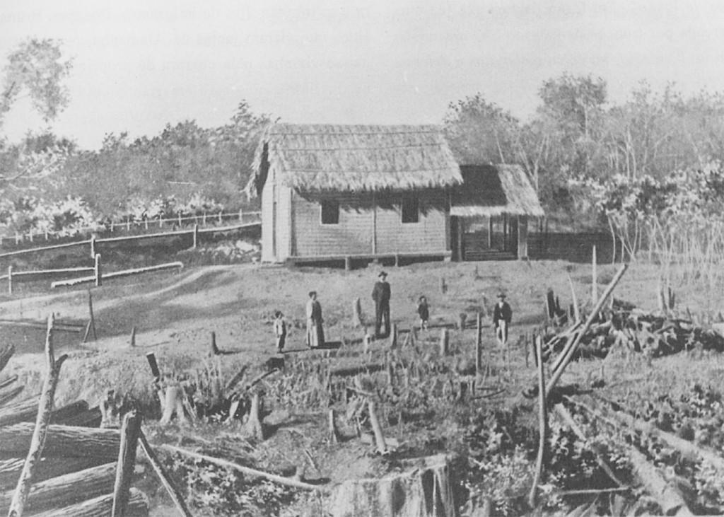 Hütte, Rossa, Baumstümpfe