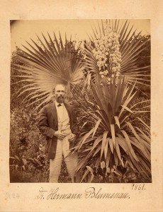 H. Blumenau im Garten