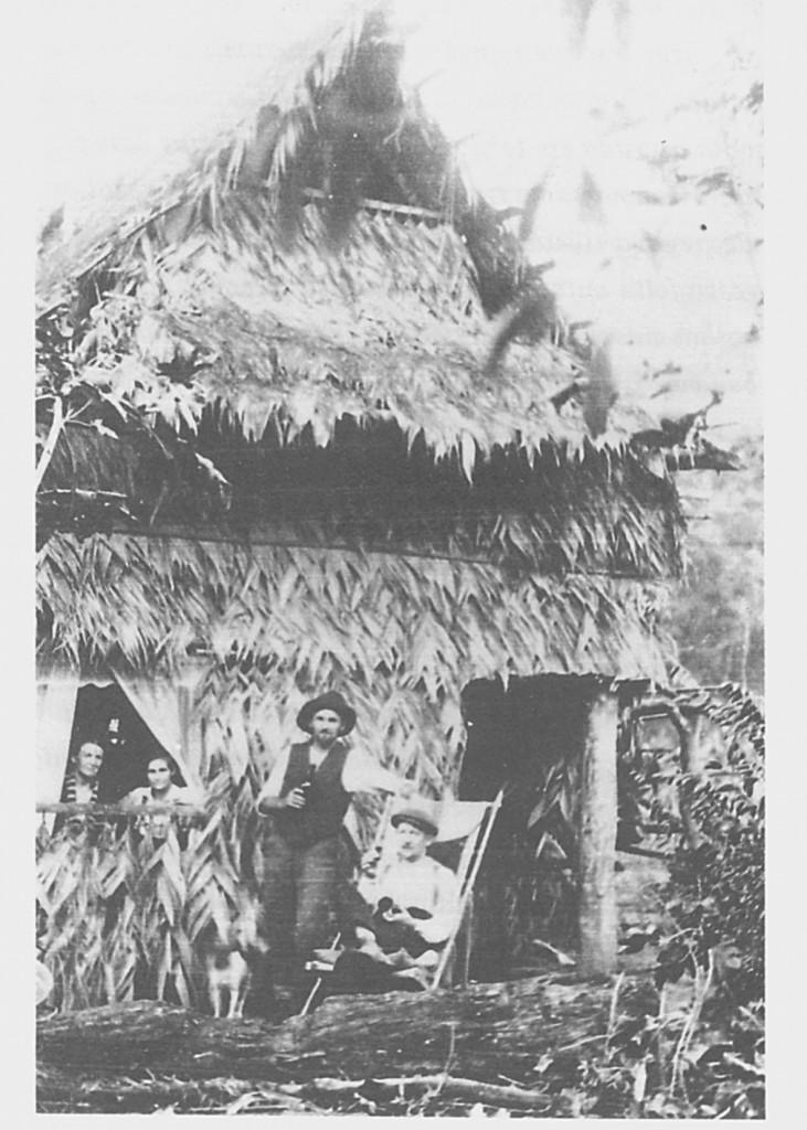 Palmitenhaus
